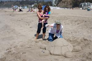 sand-turtle