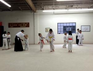 aikidopractice150222