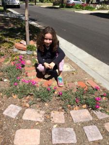 pinkiceplants